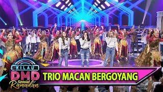 Gambar cover JOS GANDOS Goyangan Trio Macan [Edan Turun] - Kilau DMD (1/6)