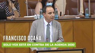 Solo VOX está en contra de la Agenda 2030