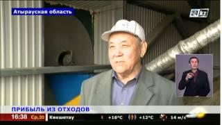 Атырауские фермеры нашли полезное применение отходам животных