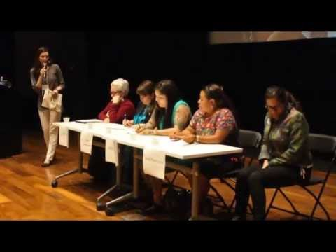CEDAW and Indigenous Women's Activism