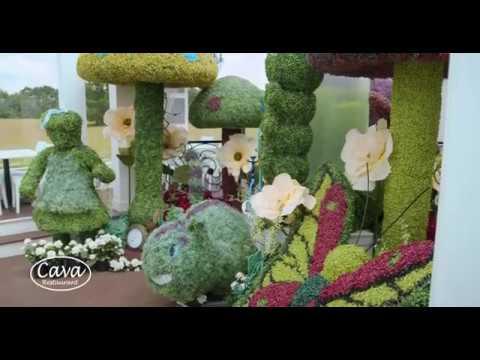 Alice in Wonderland Inspired Rooftop