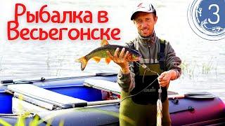 Рыбалка на спиннинг в Весьегонске день 3 Щука и жерех на воблер Приезд друзей Песня Максима