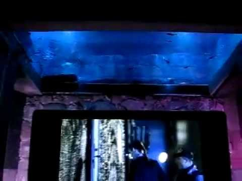 Custom waterfalls with ceiling fish tank koi pond tv for Fish tank vs pond