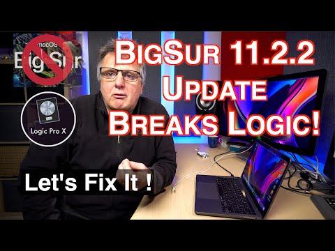 Big Sur Update