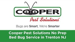 Bed Bug Removal and Control Trenton NJ. Bed Bug Pest Control and Exterminators in Trenton.