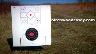 Birchwood Casey Stick-A-Bull Targets