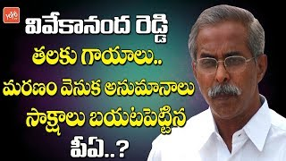 YS Vivekananda Reddy Deatth Mystery   YS Vivekananda PA Complaint To Police   AP News   YOYO TV