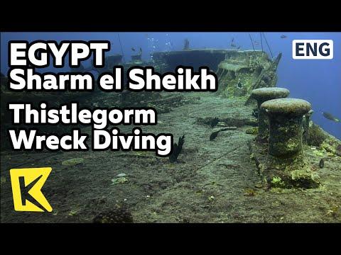 【K】Egypt Travel-Sharm el Sheikh[이집트 여행-샤름엘셰이크]티슬곰, 난파선 다이빙/Thistlegorm Wreck Diving/World War/Sea