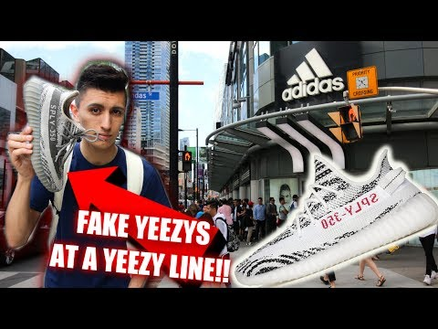 adidas jake yeezys