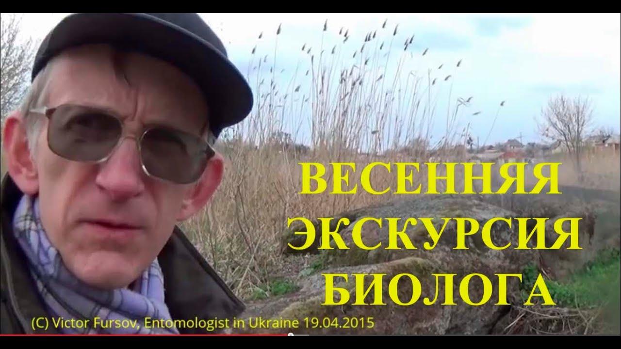 Экскурсия Энтомолога: Весенние Наблюдения в Природе - YouTube