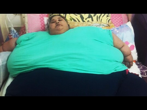 World's fattest woman got weight-loss surgery; Fat tigers in China zoo anger animal lover-02/14/2017
