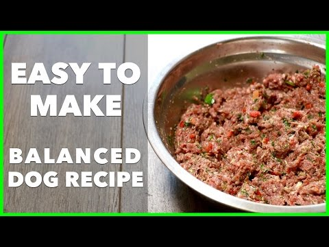 Easy homemade raw dog food recipe dog food secrets best dog food easy homemade raw dog food recipe dog food secrets best dog food 2017 forumfinder Image collections