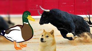 America is Going From a Raging Bull (TRUMP) to a Lame Duck (BIDEN). What does it mean for you