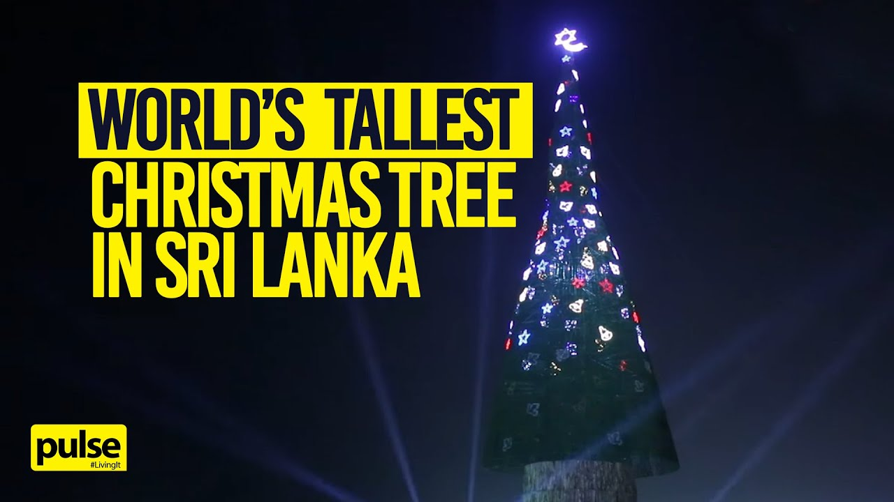World S Tallest Christmas Tree Sri Lanka Youtube