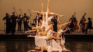 #BACHENDANSA | J. S. Bach: Concert de Brandenburg núm. 5, BWV 1050 [Allegro]