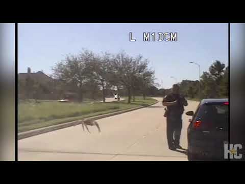 Weird News - Video Captures Enormous Spider Approaching Police Officer... Kind Of