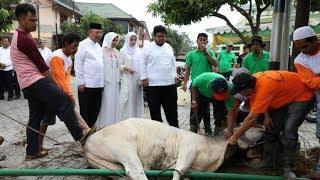 Qurban Pemko Medan 1439 H  2018 M.