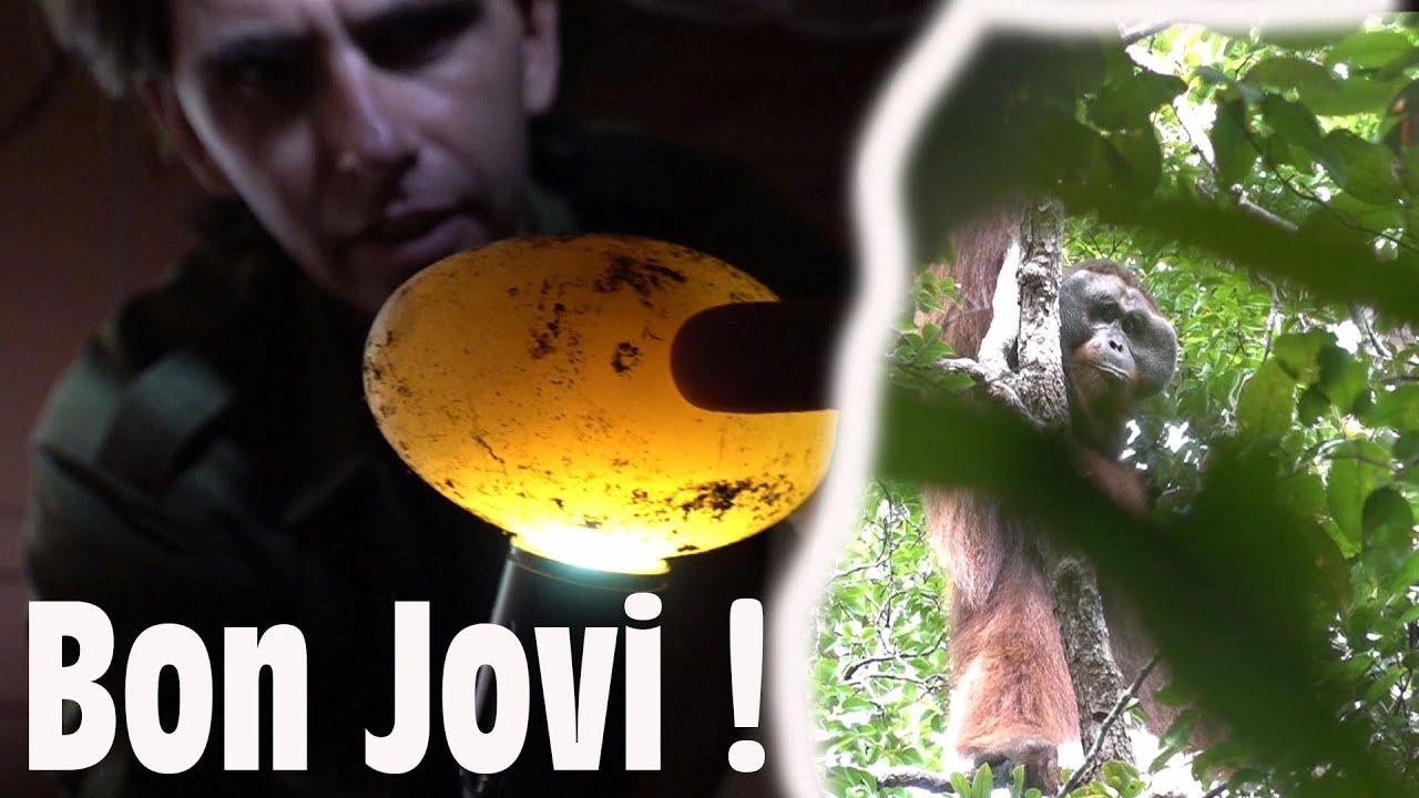 Bon Jovi et les oeufs de croco