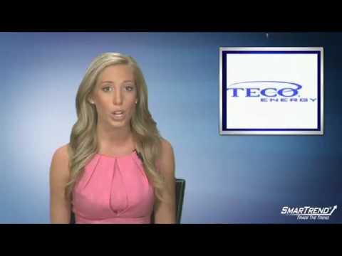 Earnings Report: TECO Energy, Inc. Reports Q2 Profit Boost