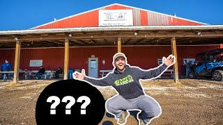 Buying FARM ANIMALS at the AUCTION!! (CATCH CLEAN COOK)