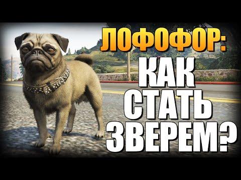 GTA 5 Зомби Апокалипсис #1 - НАЧАЛО КОНЦА!! (ГТА 5 МОДЫ)