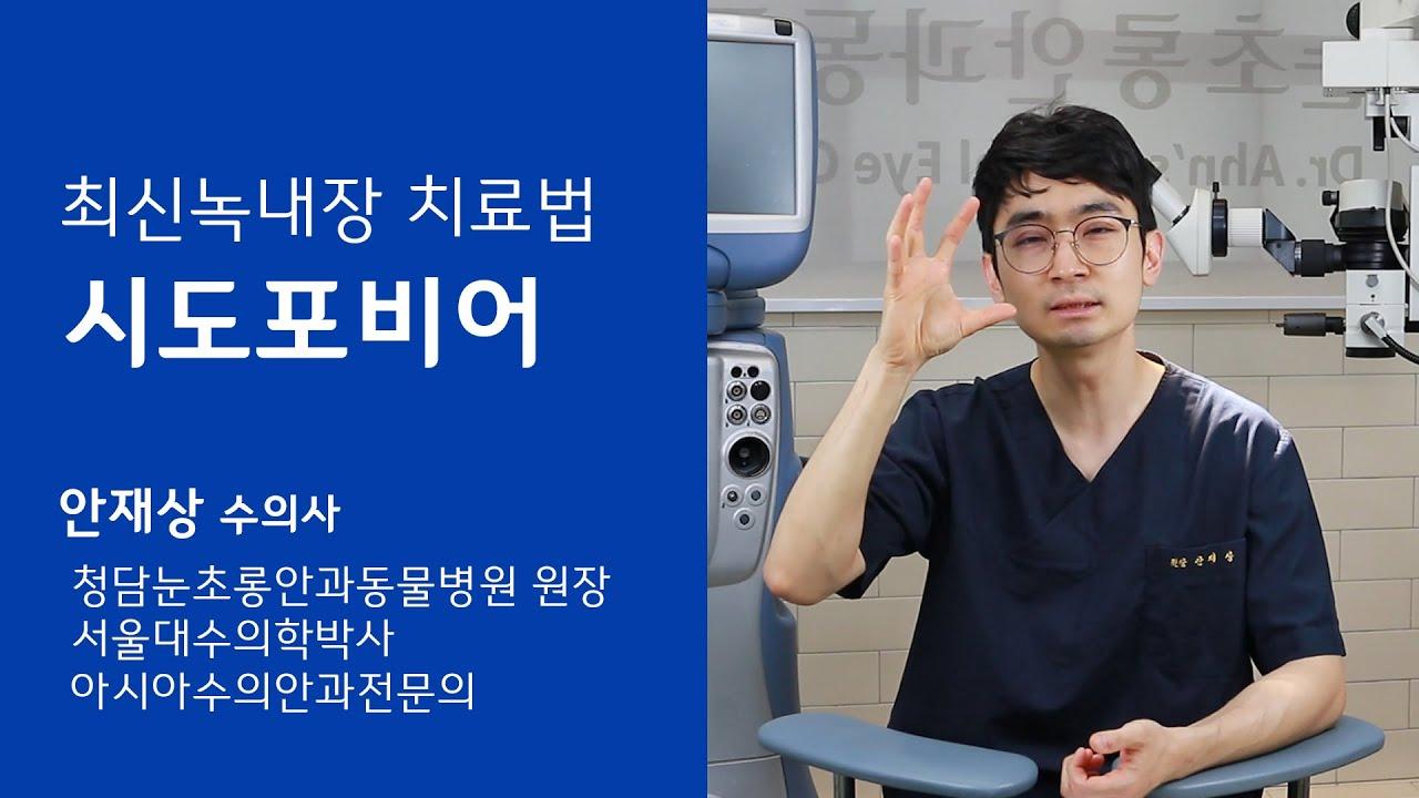 [안과] 최신 녹내장 치료법 - 청담눈초롱안과동물병원