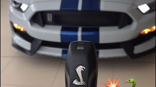 Ford Mustang Shelby GT 350/فورد موستانج شلبي جي تي ٣٥٠