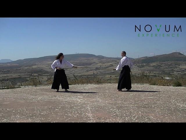 04 Kumi jo yon - Aikido Novum Experience - Kumi jo Juppon -  組み杖四 - 組み杖十本  - 合氣道 - 合氣杖