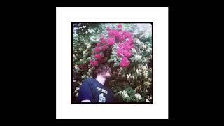 Dspekt - Priveam petale cum cadeau