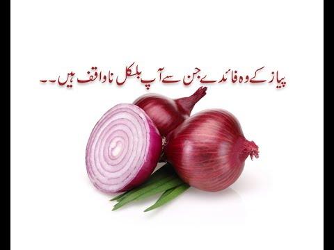 Pyaz ky faiday in Urdu/Hindi/onion benefits..pyaz k fayde/pyaz ke faide/pyaz khane ky fayde