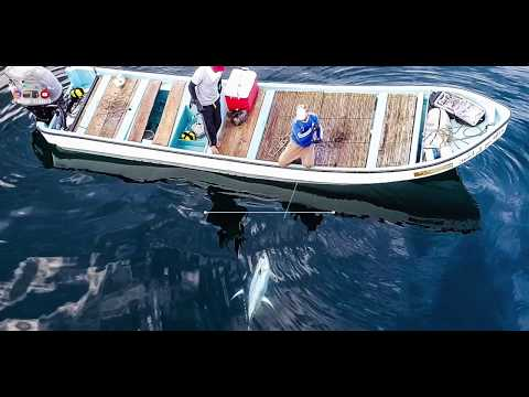 2019 Tuna's Summer Season IN OMAN
