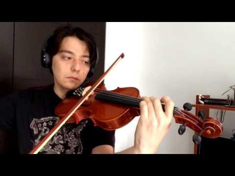 Natsume Yuujinchou Ending 1 - Natsu Yuuzora - Violin Cover
