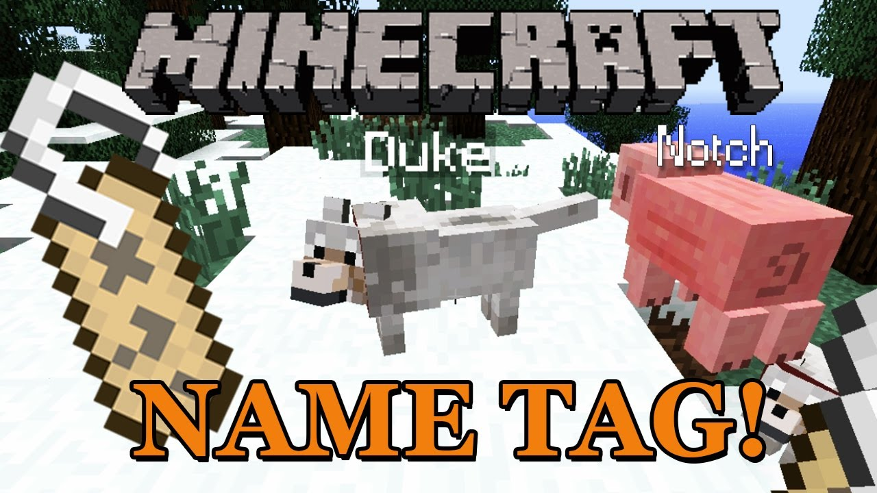 Name Tag Minecraft