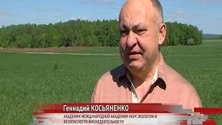 Новое удобрение повысило урожайность пшеницы на 30 процентов
