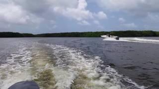 laguna torrecilla Carolina PR