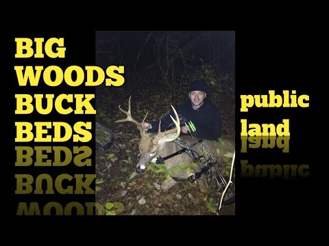 NJ Public Land Bow Kill 140