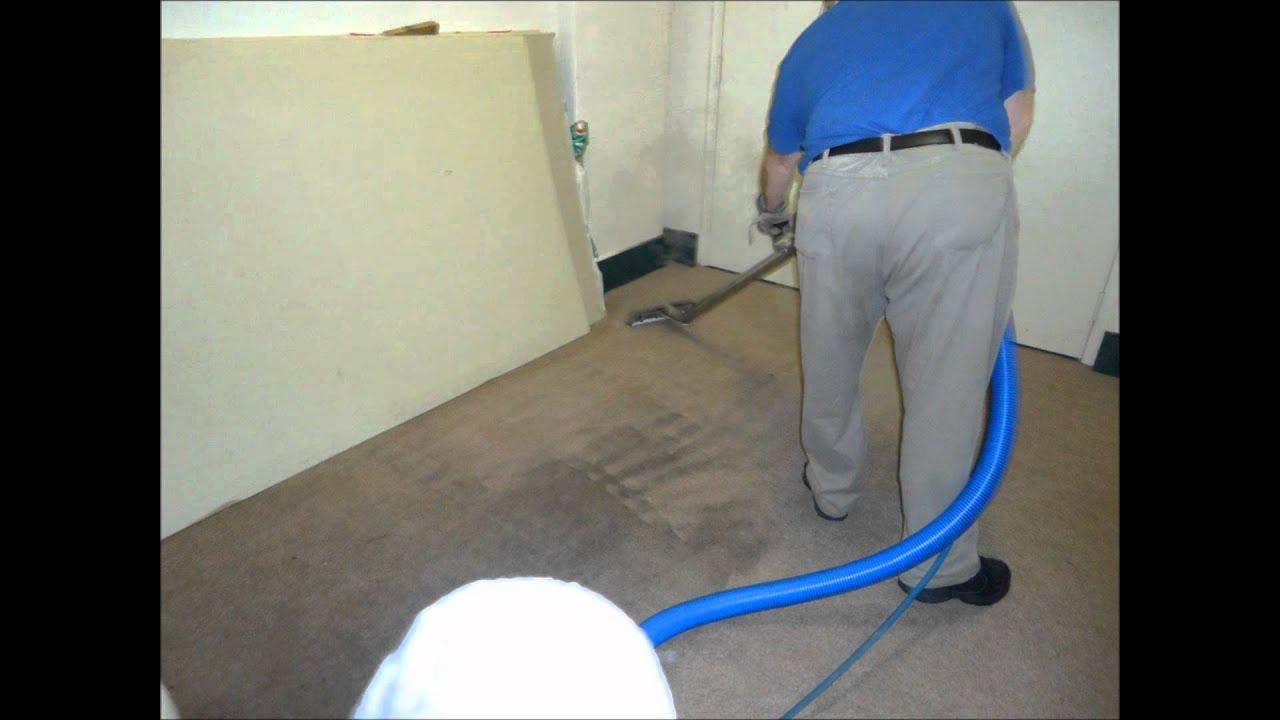 Carpet Cleaners Adrian Mi Carpet Vidalondon
