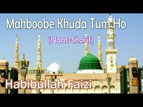Mahboobe Khuda Tum Ho ☪☪ Beautiful Naat Sharif ☪☪ Habibullah Faizi [HD]