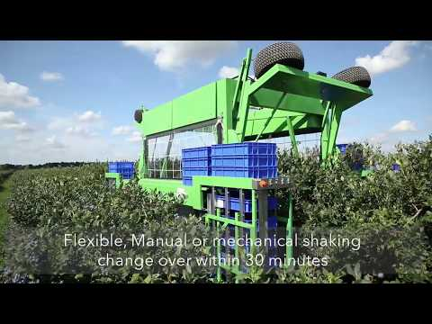 Promotional Video About Blueberry Harvester Harvy 500. It Is All About 100% Quality And 0% Loss.