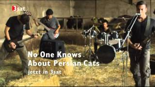 No One Knows About Persian Cats HQ cut2