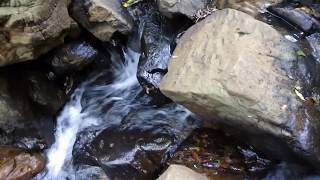 Get Relaxed With Nature - Listen to Natural Voice of Nature with Music - Natural Meditation
