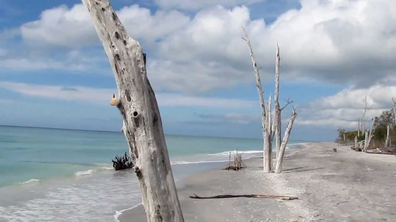 Stump Pass Beach, Florida - YouTube