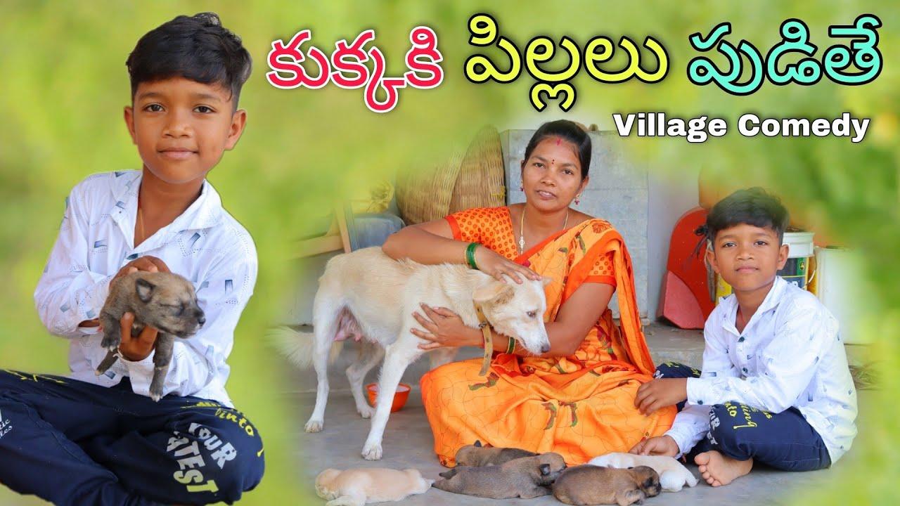 కుక్కకి పిల్లలు పుడితే | Kukkaki Pillalu Pudithe | Kannayya Videos | Trends adda