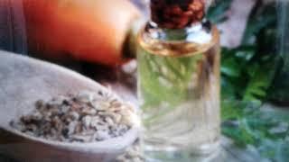 масло семян моркови: свойства и применение
