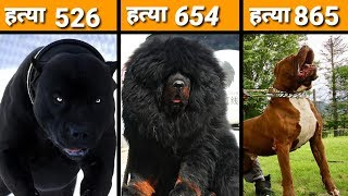 MOST DANGEROUS DOGS BREEDS IN THE WORLD / Dangerous Dog Breeds / Dog Channel