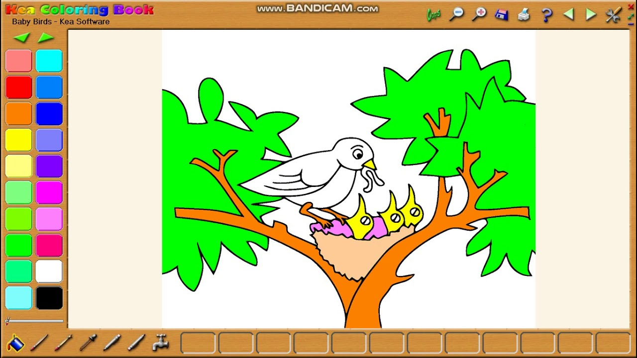 Coloring software for kids - Kea coloring book (Eps 4) - YouTube