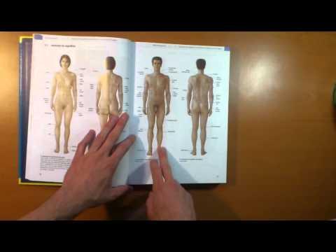 reseña-texto-y-atlas-de-anatomía-prometheus-|-somos-medicina