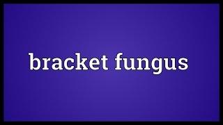 Bracket fungus Meaning