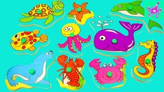 Learn Sea Animal Names | Education Video | Toys for Kids