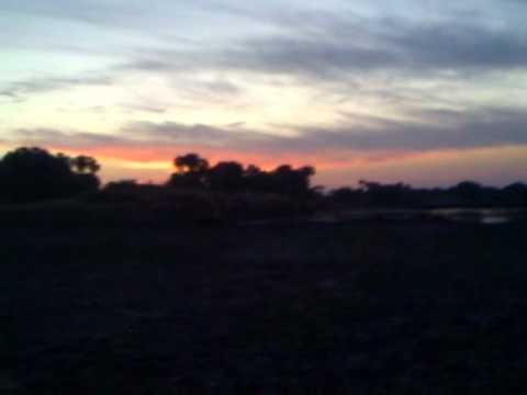 Sudan Sunrise at Dinder National Park